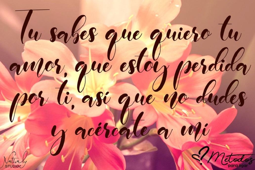 frases para mi crush amor amo te amo quiero amigo novio novia enamorado enamorada flor rosa bonito